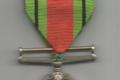 Medal Obrony (Defence Medal) 2 awers