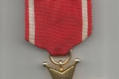 Krzyż-Kawalerski-orderu-2