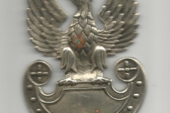 orzełek-z-czapki-Edwarda-Mazurka